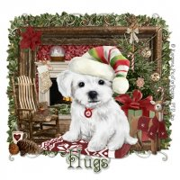 Nr7ea.daa.1-christmas-pup-extra-tags-by.jpg