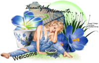 Beautiful Moments PNG Tag Welcome.png
