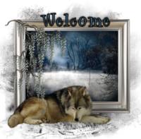 WolfWelcome-vi.png