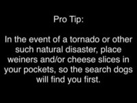 your-pro-tip.jpg