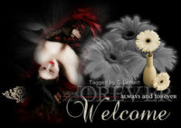emert_AlwaysandForever_Welcome-vi.jpg