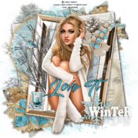 WinterMemory___LoveIt-vi.png