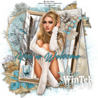 WinterMemory___YoureWelcome-vi.png