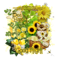 BeeHappy_GW_GoodNight-vi3.png