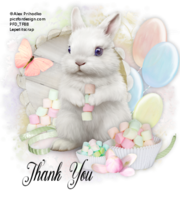 Marshmallow Bunny Tag ty.png