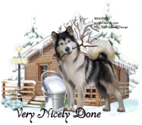 Winter Husky Tag VeryNicelyDone1077.png